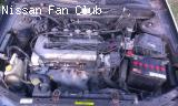 SR 20 Motor
